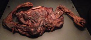 Oldcroghan Man, 362-175 v.Chr.
